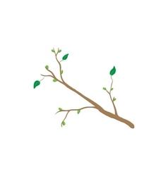 Spring tree branch icon cartoon style vector image vector image