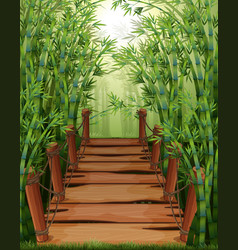 Bamboo forest with wooden bridge vector