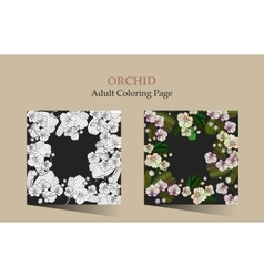 Cards with tropic flower - orchid vector