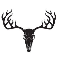 Deer skull with horns vector