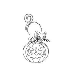 Jack-o-lantern pumpkin and cat vector