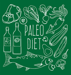 Paleo diet healthy food low carb vector