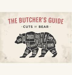 butcher diagram scheme - bear vector image vector image