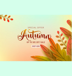 autumn banner background fall floral vector image
