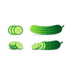 cucumber set vector image
