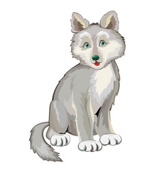Cute little wolf baprintable page for children vector