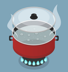 Red pan with lid and boiling water on gas burner vector