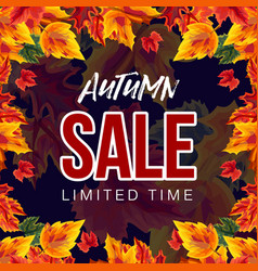 stylish banner with autumn sale promo vector image