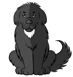 big fluffy dog vector image