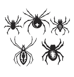 Halloween Spiders vector image vector image