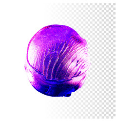 color acrylic paint vector image