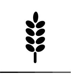 ear wheat icon design vector image