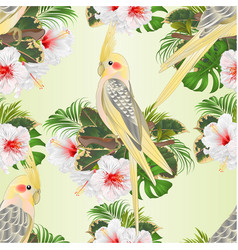 seamless texture yellow cockatiels cute funny vector image