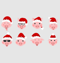 set christmas pigs with santa hats symbol 2019 vector image