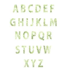 Texture flower font vector