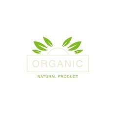 Leaf Crown Organic Product Logo vector image vector image