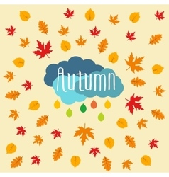 Autumn falling maple and oak leaves pattern vector