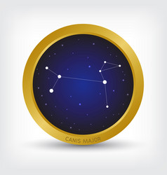 Canis major constellation in golden circle vector
