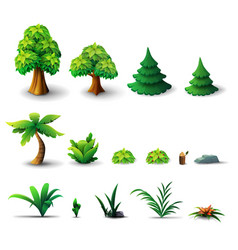 large collection trees and shrubs isolated on vector image