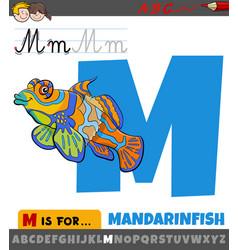 Letter m from alphabet with cartoon mandarinfish vector