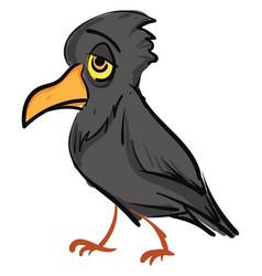 sad grey crow on white background vector image