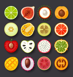 fruit icon set-2 vector image vector image