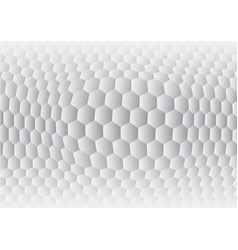 hexagon gray and white abstract background vector image