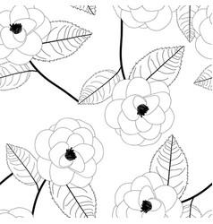 camellia flower on white background vector image