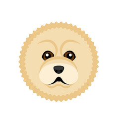 Cute chow chow dog avatar vector