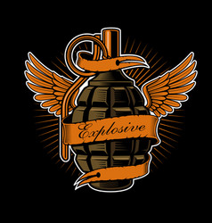 grenade with wings vector image