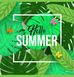 hello summer typographical background vector image