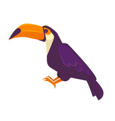 purple toucan bird with long beak big exotic bird vector image