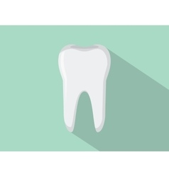 tooth isolated with green background vector image