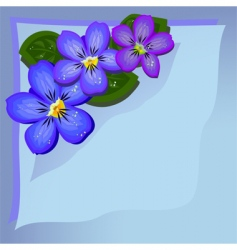 Violets background vector