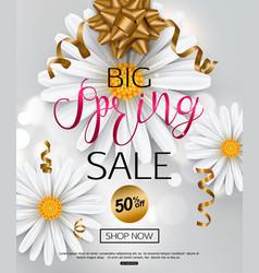 elegant spring sale banner with chamomile flower vector image