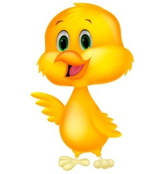 Cute baby chicken cartoon vector
