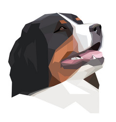 head bernese mountain dog in geometric style vector image