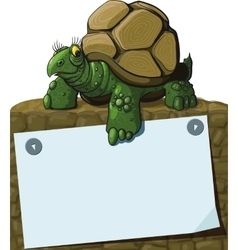Intelligent Turtle vector image