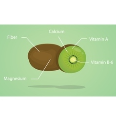 Kiwi nutrition explanation with flat style vector