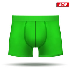 Male green underpants brief isolated on background vector image
