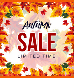 modern banner for autumn sale vector image