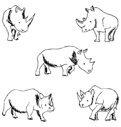 Rhinos A sketch by hand Pencil drawing vector