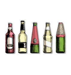 set beer bottle vector image