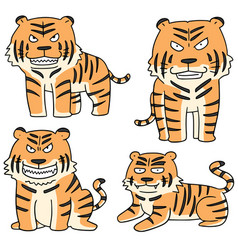 Set of tiger vector