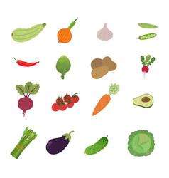 set vegetable vector image