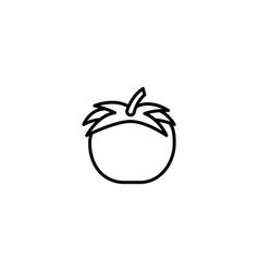 tomato vegatable icon vector image
