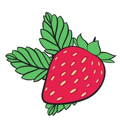 Painting Strawberry vector image vector image