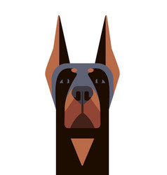 head of doberman in geometric style vector image