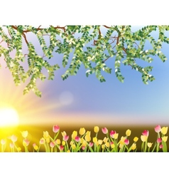 Tulip flowers on sky background EPS 10 vector image vector image