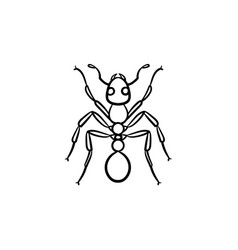 ant hand drawn sketch icon vector image